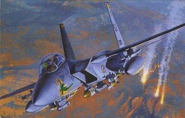 F-15E Strike Eagle `Operation Iraqi Freedom` · AY 12215 ·  Academy Plastic Model · 1:48
