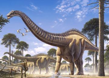 Supersaurus, Puzzle 70 Teile · CAS 007073 ·  Castorland