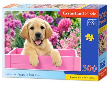 Labrador Puppy in Pink Box - Puzzle - 300 Teile · CAS 030071 ·  Castorland