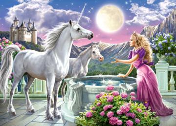 Princess and her Unicorns,Puzzle 120 Tei · CAS 130981 ·  Castorland