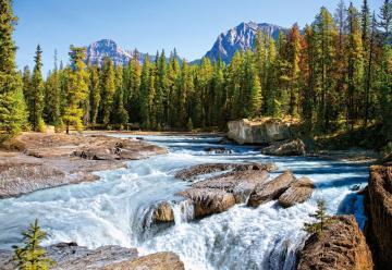Athabasca River, Jasper National Park, Canada - 1500 Teile · CAS 1507622 ·  Castorland