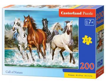 Call of Nature - Puzzle - 200 Teile · CAS 222056 ·  Castorland