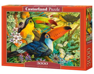 Interlude - Puzzle - - 3000 Teile · CAS 3004332 ·  Castorland
