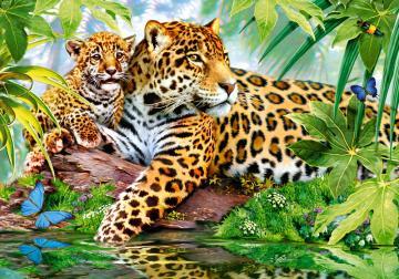 Jaguars by the Pool, Puzzle 500 Teile · CAS 520112 ·  Castorland