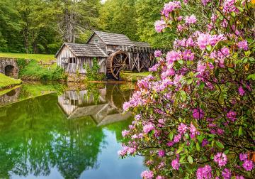 Mill by the Pond - Puzzle - 500 Teile · CAS 53490 ·  Castorland