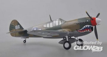 P-40 China 1945 · EZM 39313 ·  Easy Model · 1:48