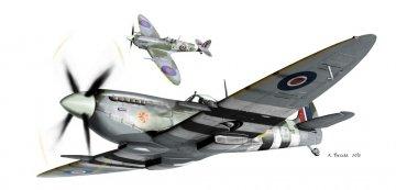 Spitfire Mk.IXc - Dual Combo  - Super44 · EDU 4429 ·  Eduard · 1:144