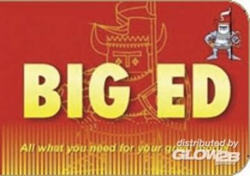 BIG ED - P-40E Warhawk [Hasegawa] · EDU BIG4834 ·  Eduard · 1:48
