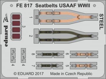 Seatbelts USAAF WWII STEEL · EDU FE817 ·  Eduard · 1:48