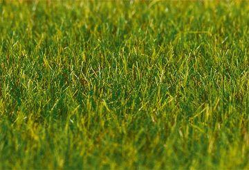 PREMIUM Streufasern, Gras, lang, dunkelgrün, 30 g · FAL 180485 ·  Faller · H0