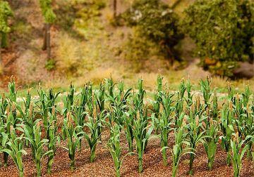 36 Maispflanzen · FAL 181250 ·  Faller