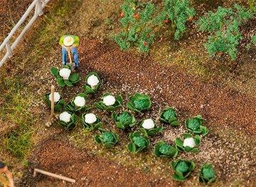 10 Grün- und 10 Blumenkohlköpfe · FAL 181257 ·  Faller · H0