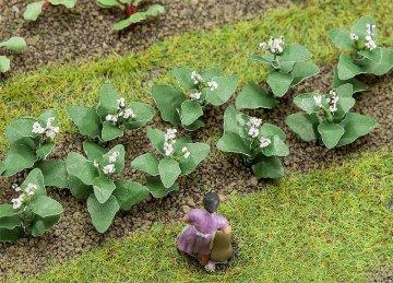14 Tabakpflanzen · FAL 181275 ·  Faller