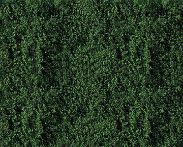 Belaubungsvlies, dunkelgrün · FAL 181391 ·  Faller