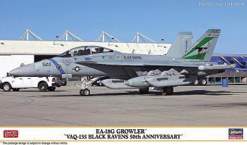 EA-18G Growler VAQ-135 Black Ravens · HG 602351 ·  Hasegawa · 1:72