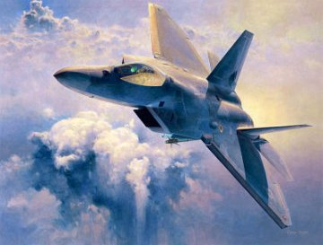 F-22 Raptor · HG 607245 ·  Hasegawa · 1:48