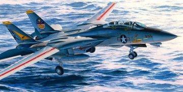 F-14A Tomcat · HG 607246 ·  Hasegawa · 1:48