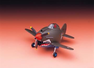 EGG PLANE - P-40 Warhawk · HG 660119 ·  Hasegawa