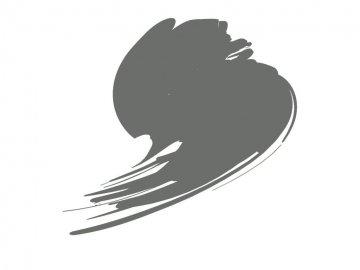 Mouse Grey (RAL 7005) - Orange Line (17ml) · HTK C335 ·  Hataka