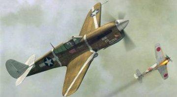 P-40F ´ALLIES´ · HC 1417 ·  Hobby Craft · 1:48