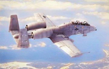 N/AW A-10A Thunderbolt II · HBO 80324 ·  HobbyBoss · 1:48