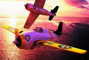 F4F-3 early Wildcat · HBO 80326 ·  HobbyBoss · 1:48