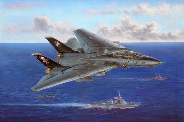 F-14B Tomcat · HBO 80367 ·  HobbyBoss · 1:48