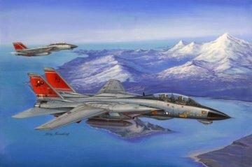 F-14D Super Tomcat · HBO 80368 ·  HobbyBoss · 1:48