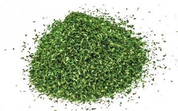 Skale Scenics Scatter - Dark Green · HR R7176 ·  Humbrol