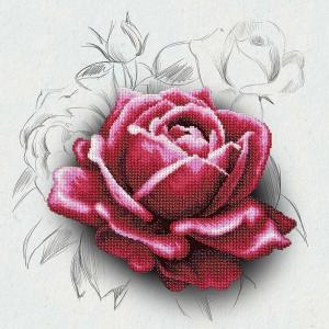 Rose Drawing, Perlenstickset · MAC 11038 ·  Miniart Crafts