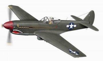 XP 40Q-2 Warhawk, letzte Ausführung · PLM CM48104 ·  Planet Models · 1:48