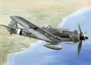 Focke-Wulf Fw 190 D-13/R11 · PLM CM72119 ·  Planet Models · 1:72