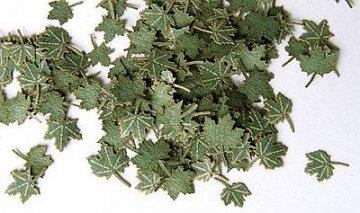 Grüne Walnussblätter · PM 35253 ·  plusmodel · 1:35