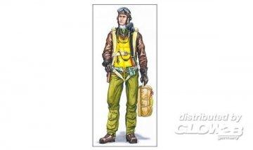Pilot P-47 · PM AL4036 ·  plusmodel · 1:48