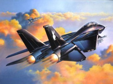 Grumman F-14A Black Tomcat · RE 04514 ·  Revell · 1:48