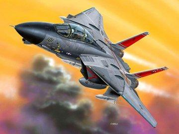 F-14D Tomcat · RE 06623 ·  Revell · 1:100