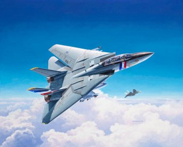 Model Set F-14D Super Tomcat · RE 63950 ·  Revell · 1:100