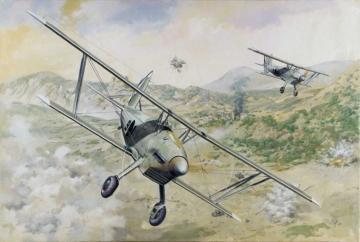 Arado Ar 68E · RD 427 ·  Roden · 1:48