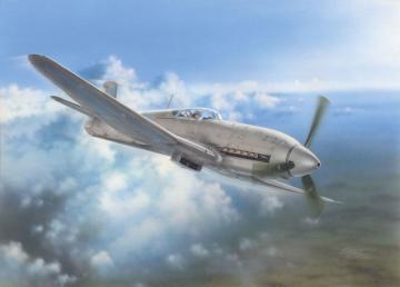 Heinkel He 100 D Soviet and Japanese Plan · SH 32045 ·  Special Hobby · 1:32