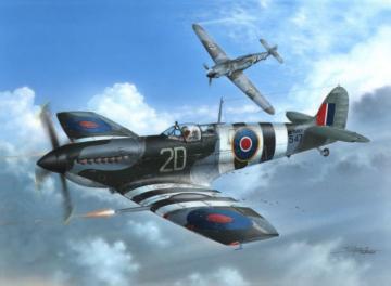 Supermarine Seafire Mk.III D-Day Fleet E · SH 48128 ·  Special Hobby · 1:48