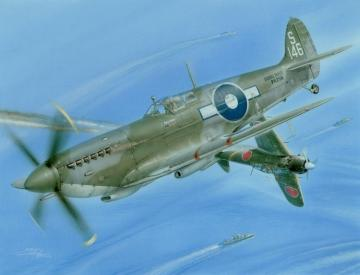 Supermarine Seafire Mk. III Last Fights over Pacific · SH SH48052 ·  Special Hobby · 1:48