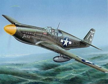P-51AF-6A Mustang · SH SH72043 ·  Special Hobby · 1:72