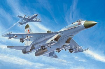 Russian Su-27 Early type Fighter · TRU 01661 ·  Trumpeter · 1:72