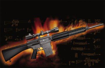 AR15/M16/M4 FAMILY-SR25 · TRU 01913 ·  Trumpeter · 1:3
