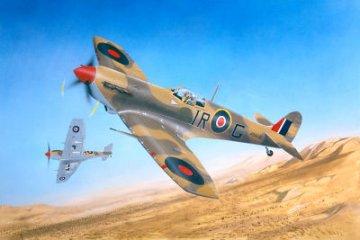 Supermarine Spitfire Mk. Vb/Trop · TRU 02412 ·  Trumpeter · 1:24