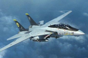 F-14D Tomcat · TRU 03919 ·  Trumpeter · 1:144