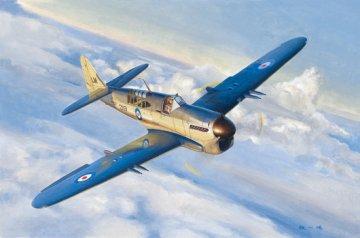 Fairey Firefly Mk.1 · TRU 05810 ·  Trumpeter · 1:48
